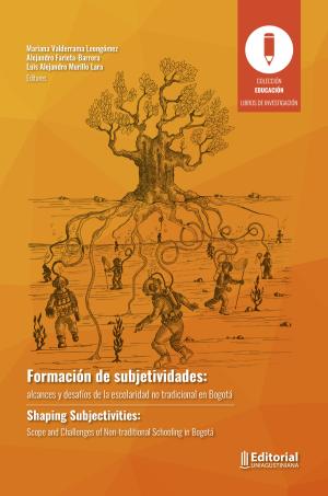 Cubierta para Formación de subjetividades: alcances y desafíos de la escolaridad no tradicional en Bogotá